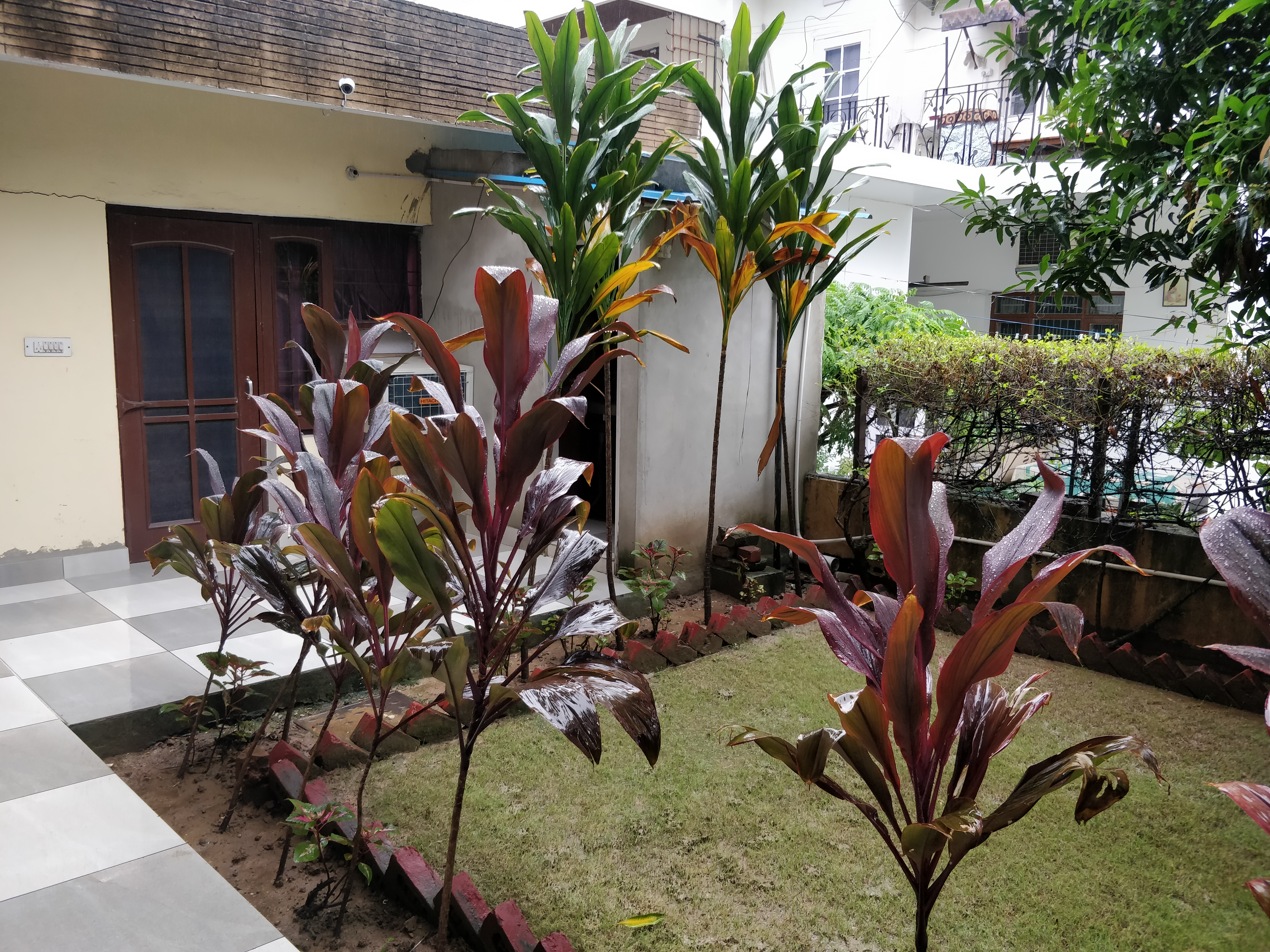 Individual room for a female in Chandigarh